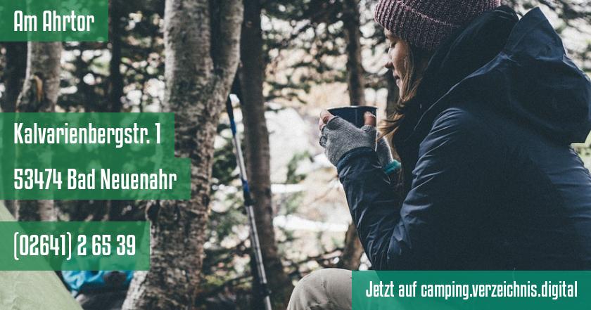 Am Ahrtor auf camping.verzeichnis.digital